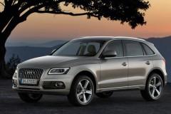 Audi Q5 foto attēls 12